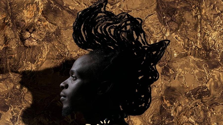 Nouvel album: Mr Leo se proclame «Lion of Africa, Jeey»